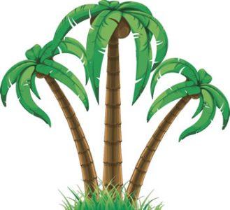 Palms_T